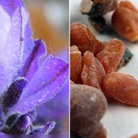 lavender frankincense wholesale facial mud