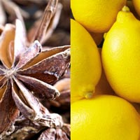 Star Anise Lemon Wholesale Body Butter